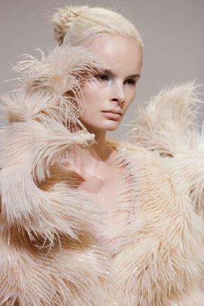 IRIS VAN HERPEN Iris Van Herpen Couture Autumn 2012